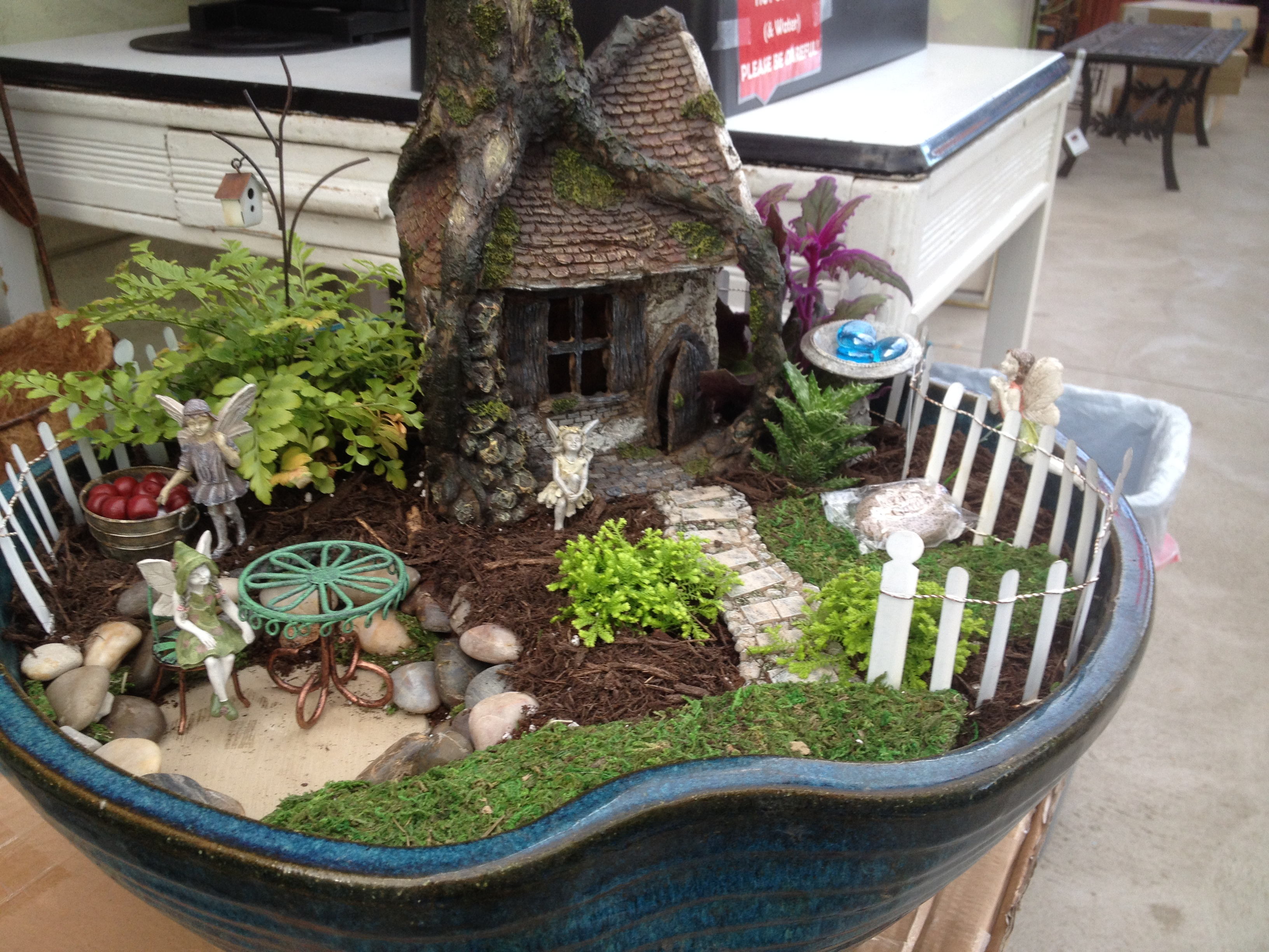 Exceptional How To Build A Fairy Garden: Pictures Gallery